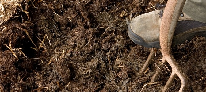FeaturedImage-Mulch-672x300