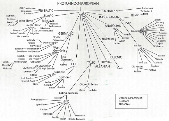 Indo-European-lang-tree-001_cropped_580