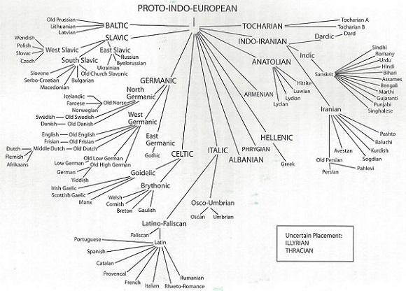 Indo-European-lang-tree-001_cropped_580